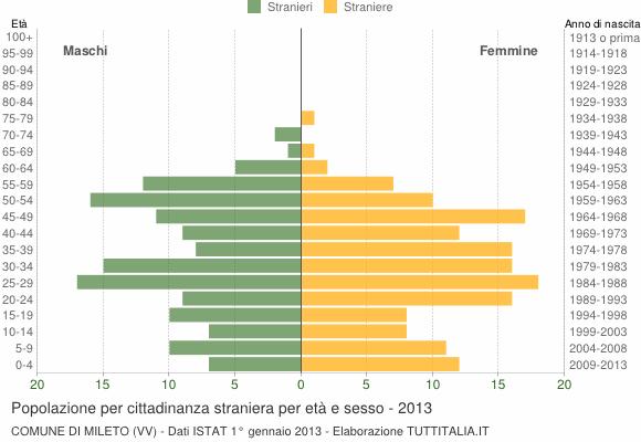 Grafico cittadini stranieri - Mileto 2013