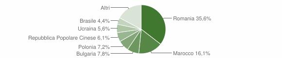 Grafico cittadinanza stranieri - Belvedere Marittimo 2009