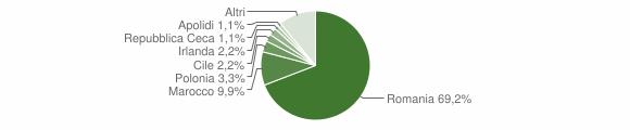 Grafico cittadinanza stranieri - San Nicola Arcella 2009
