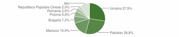 Grafico cittadinanza stranieri - San Ferdinando 2007