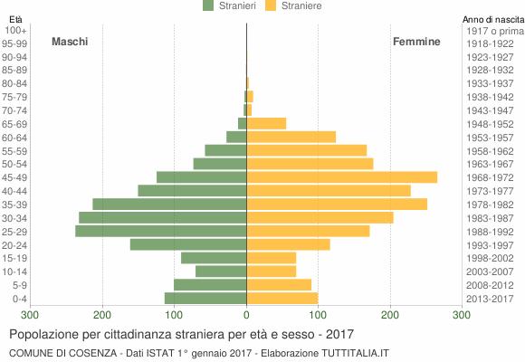 Grafico cittadini stranieri - Cosenza 2017