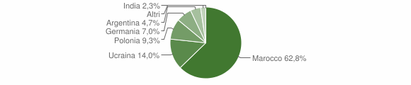 Grafico cittadinanza stranieri - Spilinga 2004