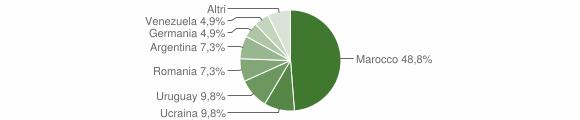 Grafico cittadinanza stranieri - Spilinga 2007
