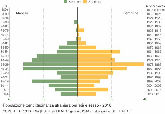 Grafico cittadini stranieri - Polistena 2018