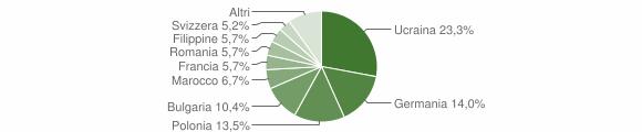 Grafico cittadinanza stranieri - Ricadi 2007