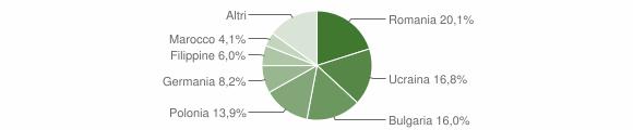 Grafico cittadinanza stranieri - Ricadi 2010