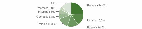 Grafico cittadinanza stranieri - Ricadi 2011