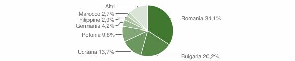 Grafico cittadinanza stranieri - Ricadi 2018