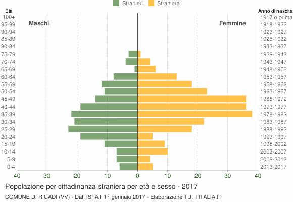 Grafico cittadini stranieri - Ricadi 2017