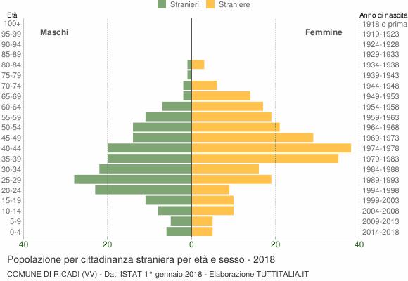 Grafico cittadini stranieri - Ricadi 2018