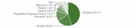 Grafico cittadinanza stranieri - Cinquefrondi 2019