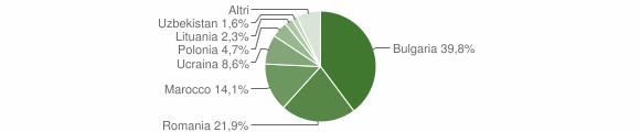 Grafico cittadinanza stranieri - Curinga 2010