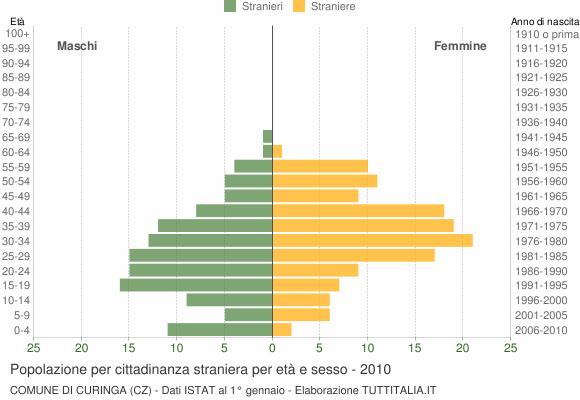 Grafico cittadini stranieri - Curinga 2010