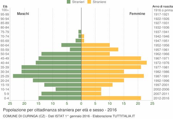 Grafico cittadini stranieri - Curinga 2016