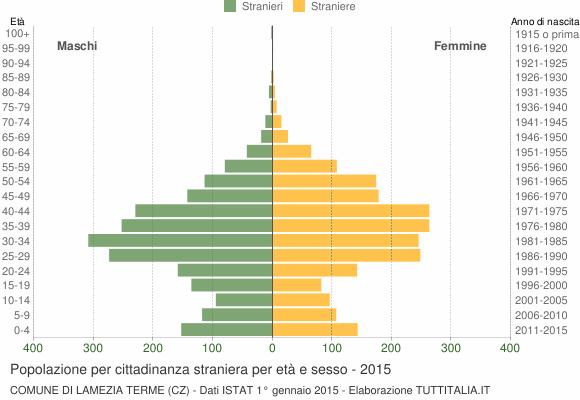 Grafico cittadini stranieri - Lamezia Terme 2015
