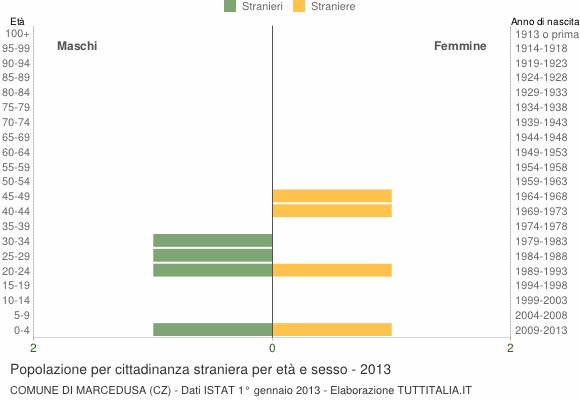 Grafico cittadini stranieri - Marcedusa 2013