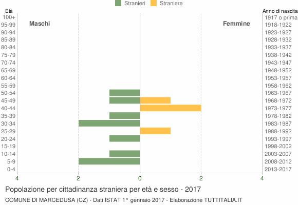 Grafico cittadini stranieri - Marcedusa 2017