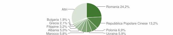 Grafico cittadinanza stranieri - Rende 2013