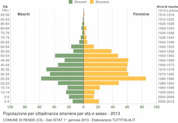 Grafico cittadini stranieri - Rende 2013