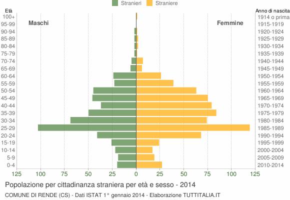 Grafico cittadini stranieri - Rende 2014