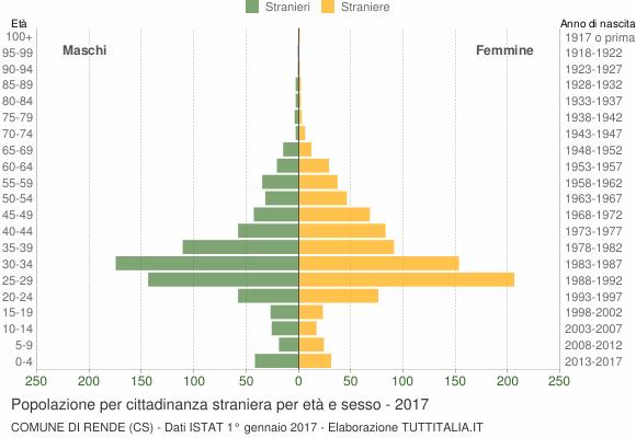 Grafico cittadini stranieri - Rende 2017