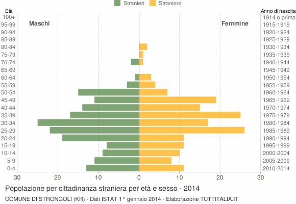Grafico cittadini stranieri - Strongoli 2014