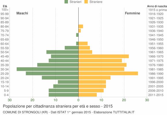 Grafico cittadini stranieri - Strongoli 2015