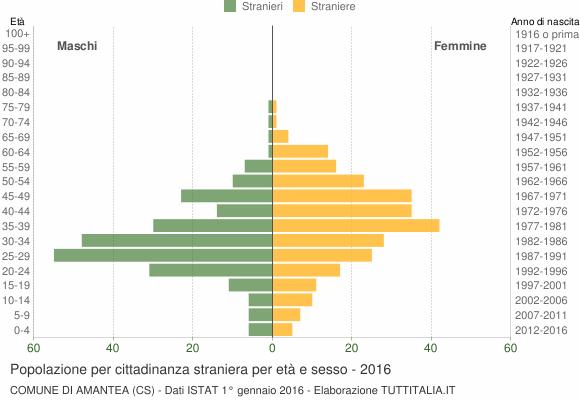 Grafico cittadini stranieri - Amantea 2016