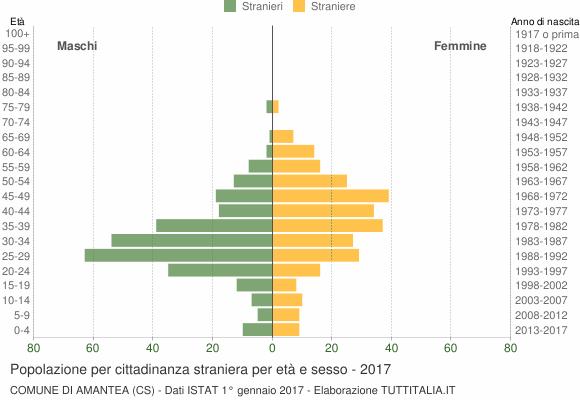 Grafico cittadini stranieri - Amantea 2017