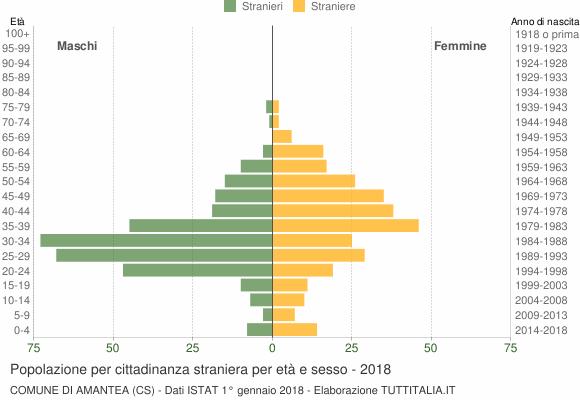 Grafico cittadini stranieri - Amantea 2018