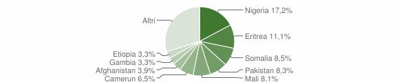 Grafico cittadinanza stranieri - Riace 2016