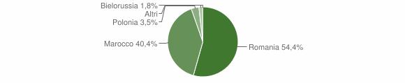 Grafico cittadinanza stranieri - Fiumara 2008