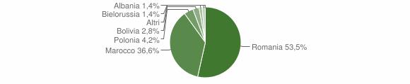 Grafico cittadinanza stranieri - Fiumara 2010