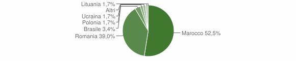 Grafico cittadinanza stranieri - Fiumara 2013