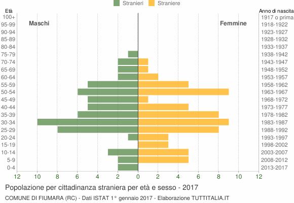 Grafico cittadini stranieri - Fiumara 2017