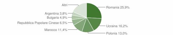 Grafico cittadinanza stranieri - Nicotera 2009