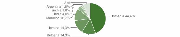 Grafico cittadinanza stranieri - Sersale 2019