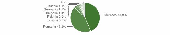 Grafico cittadinanza stranieri - Rizziconi 2009