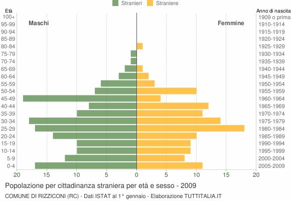 Grafico cittadini stranieri - Rizziconi 2009
