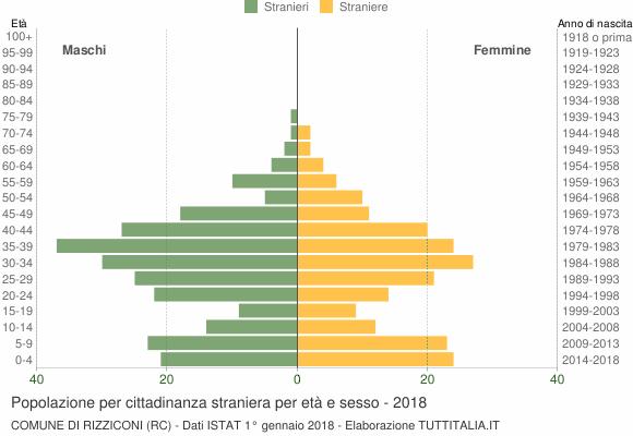 Grafico cittadini stranieri - Rizziconi 2018