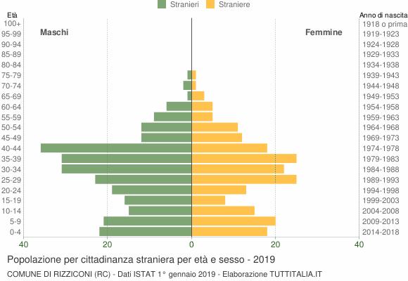 Grafico cittadini stranieri - Rizziconi 2019