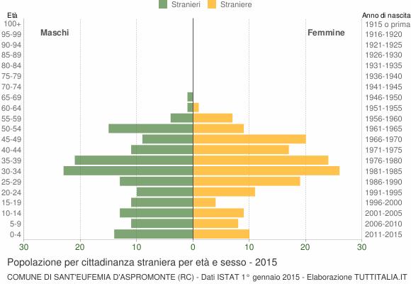 Grafico cittadini stranieri - Sant'Eufemia d'Aspromonte 2015
