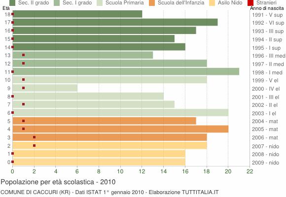 Grafico Popolazione in età scolastica - Caccuri 2010