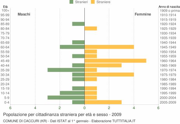 Grafico cittadini stranieri - Caccuri 2009