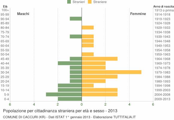 Grafico cittadini stranieri - Caccuri 2013