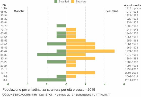 Grafico cittadini stranieri - Caccuri 2019