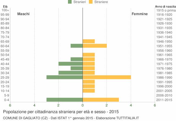 Grafico cittadini stranieri - Gagliato 2015