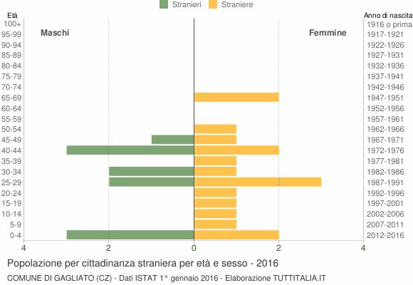 Grafico cittadini stranieri - Gagliato 2016
