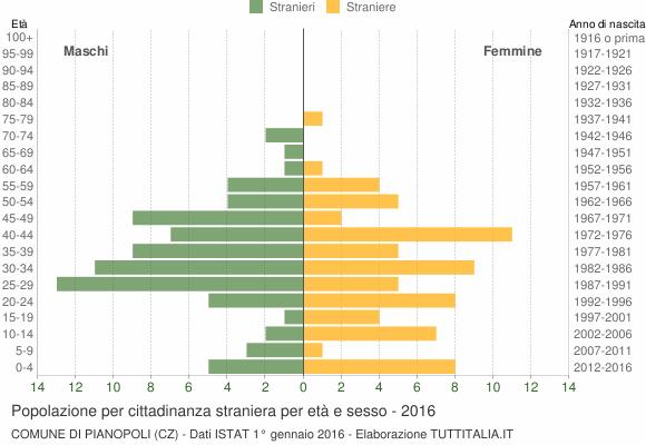 Grafico cittadini stranieri - Pianopoli 2016