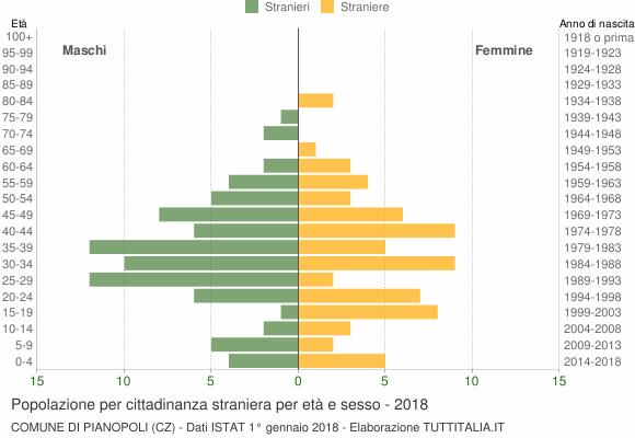Grafico cittadini stranieri - Pianopoli 2018